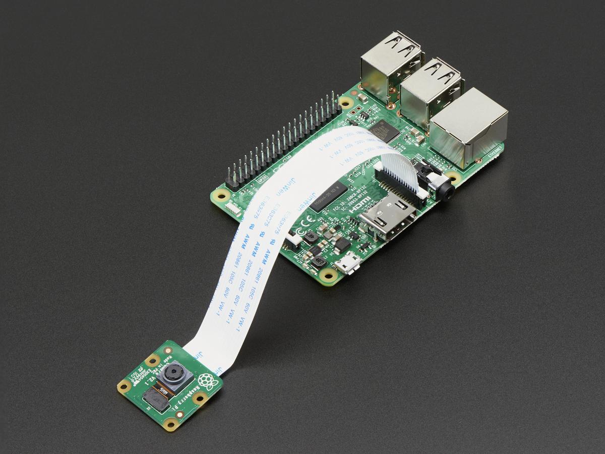 Raspberry Pi NoIR Camera Board - Infrared-sensitive Camera ID: 1567