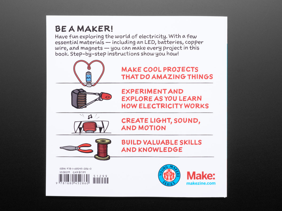 Electricity for young makers fun easy do it yourself projects by electricity for young makers fun amp easy do it yourself projects solutioingenieria Choice Image