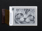 bare E-Ink display with image of cat