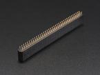 0.1 inch 2x36-pin Strip Straight Socket (Female) Header