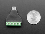 Bottom of USB Micro B Male Plug to 5-pin Terminal Block next to US quarter for scale.