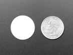 White disc next to quarter