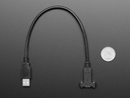 Panel Mount Cable USB C to Type A - 30cm next to quarter for size reference