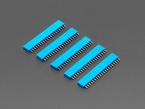Five pack of 20-pin 0.1 Female Header - Blue plastic