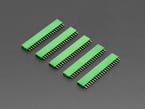 Five pack of 20-pin 0.1 Female Header - Green plastic