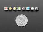8 rainbow-colored 6mm tactile buttons in a row above a US quarter.