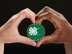 Two hands holding a 4-H logo circuit Playground