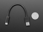 Cable next to quarter for comparison
