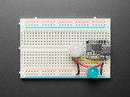 Topdown shot of 3-pin PIR sensor  assembled on a breadboard with a QT Py and jumper wires.