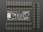 """Top down shot of Itsy Bitsy RP2040 PCB sandwiched between three 0.1"""" 16-pin male headers."""