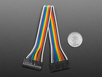 20cm long 12-pin 2.54mm pitch cable next to US quarter for scale.