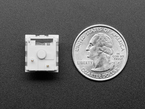 Bottom of Kailh key switch next to US quarter.