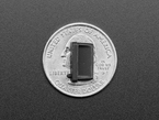 Single black silicone USB A cover atop of a US quarter for scale.