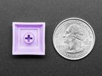 Bottom of lavender plastic keycap next to US quarter.