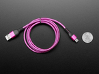 Top view of coiled pink and purple USB cable with USB A and USB C connectors next to US quarter for scale.