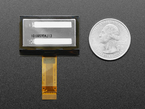 """Back of 1.3"""" OLED display module next to US quarter for scale."""