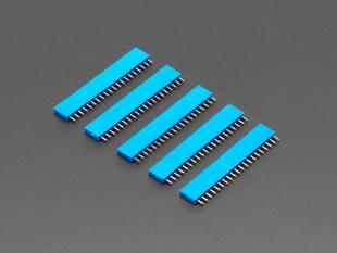 "20-pin 0.1"" Female Header - Blue - 5 pack"