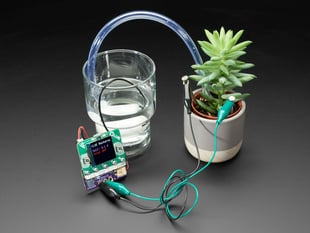 Adafruit Bonsai Buckaroo - micro:bit & CLUE Plant Care Helper