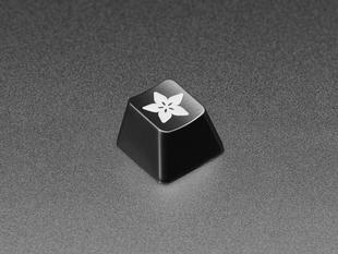 Angled shot of single black keycap with the Adafruit logo.