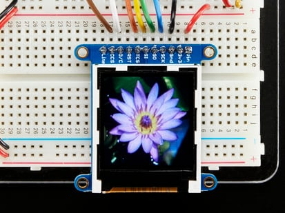 TFT display with purple flower on screen
