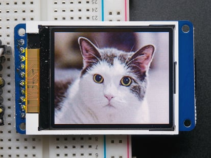 TFT showing image of cat