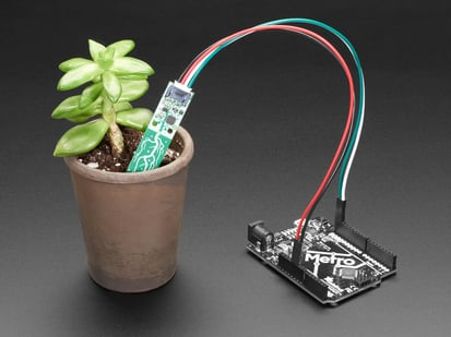 Soil sensor in small potted plant, with wires connected to Adafruit Metro