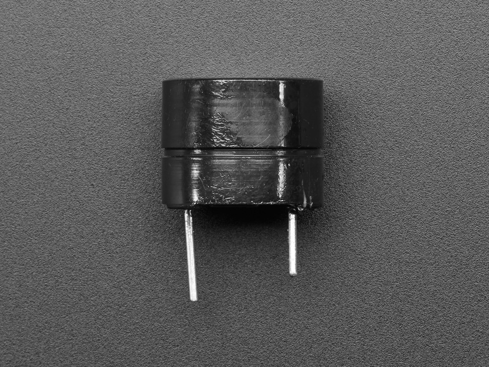 Profile shot of buzzer and pins