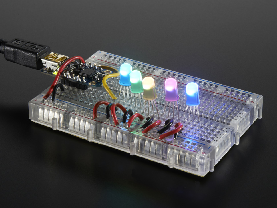 Five NeoPixel Diffused 5mm Through-Hole LEDs wired up to a microcontroller, glowing rainbow