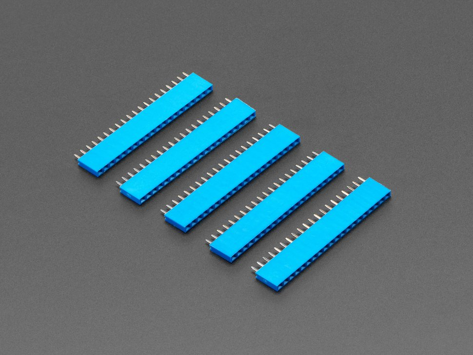 "20-pin 0.1"" Female Header - Blue - 5 pack"