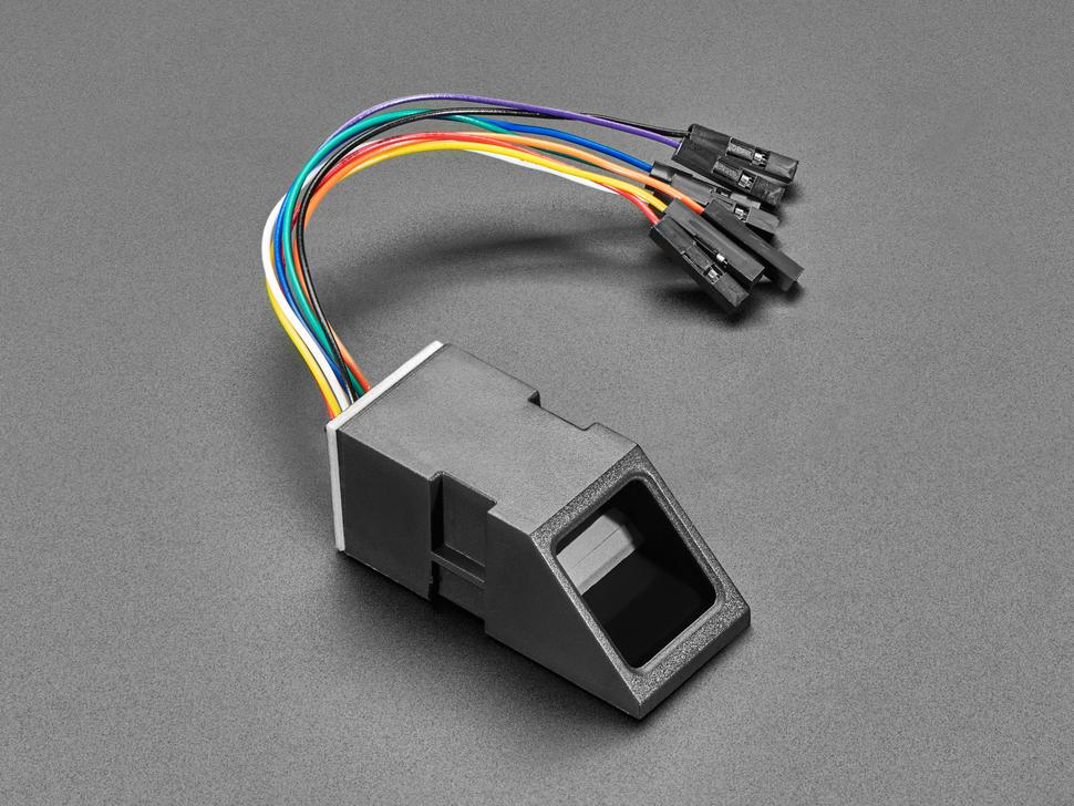 Fingerprint sensor with detection lens and socket cable