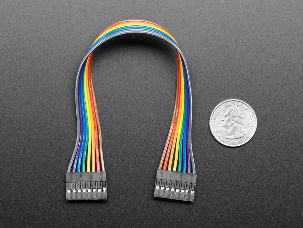 20cm long 8-pin 2.54mm pitch cable next to US quarter for scale.