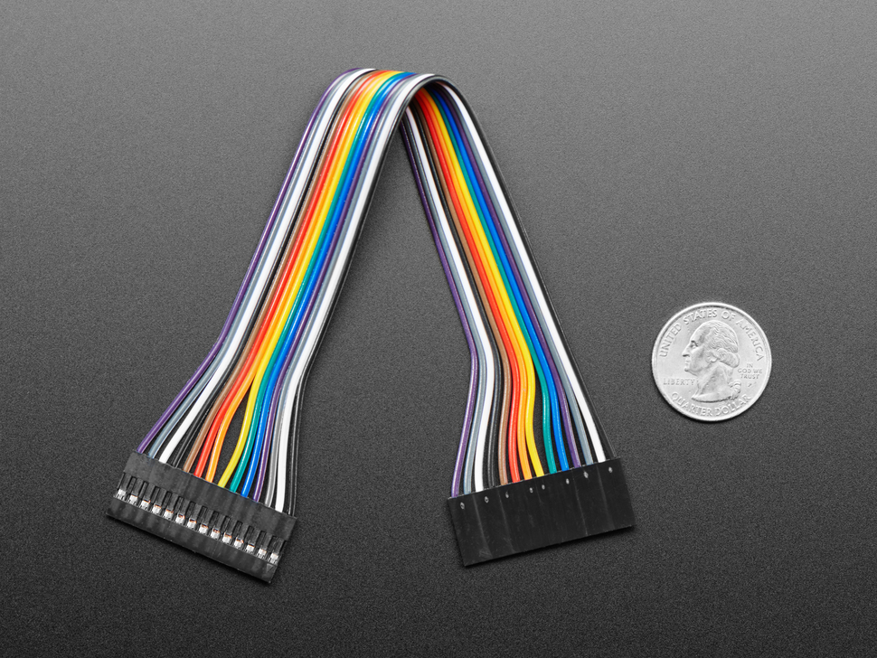 20cm long 14-pin 2.54mm pitch cable next to US quarter for scale.