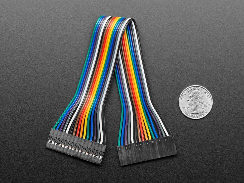 20cm long 16-pin 2.54mm pitch cable next to US quarter for scale.