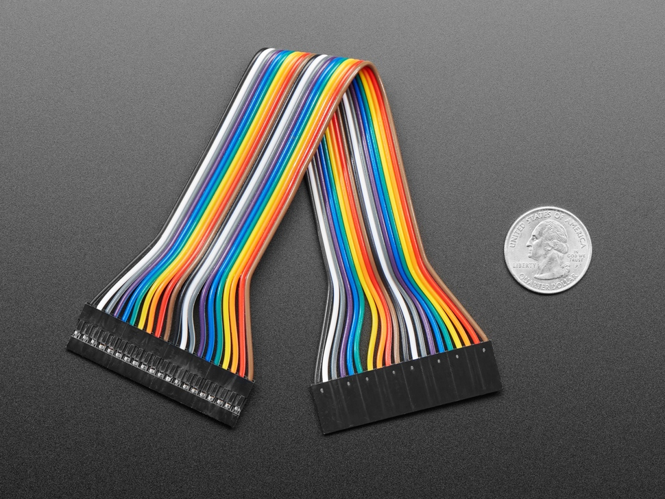20cm long 20-pin 2.54mm pitch cable next to US quarter for scale.