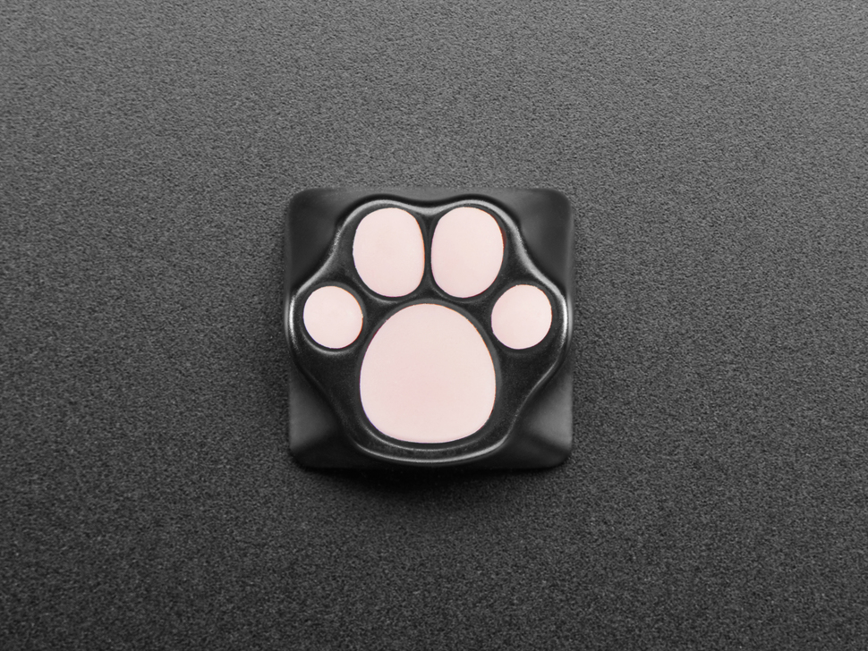 Top view of pink paw print switch.