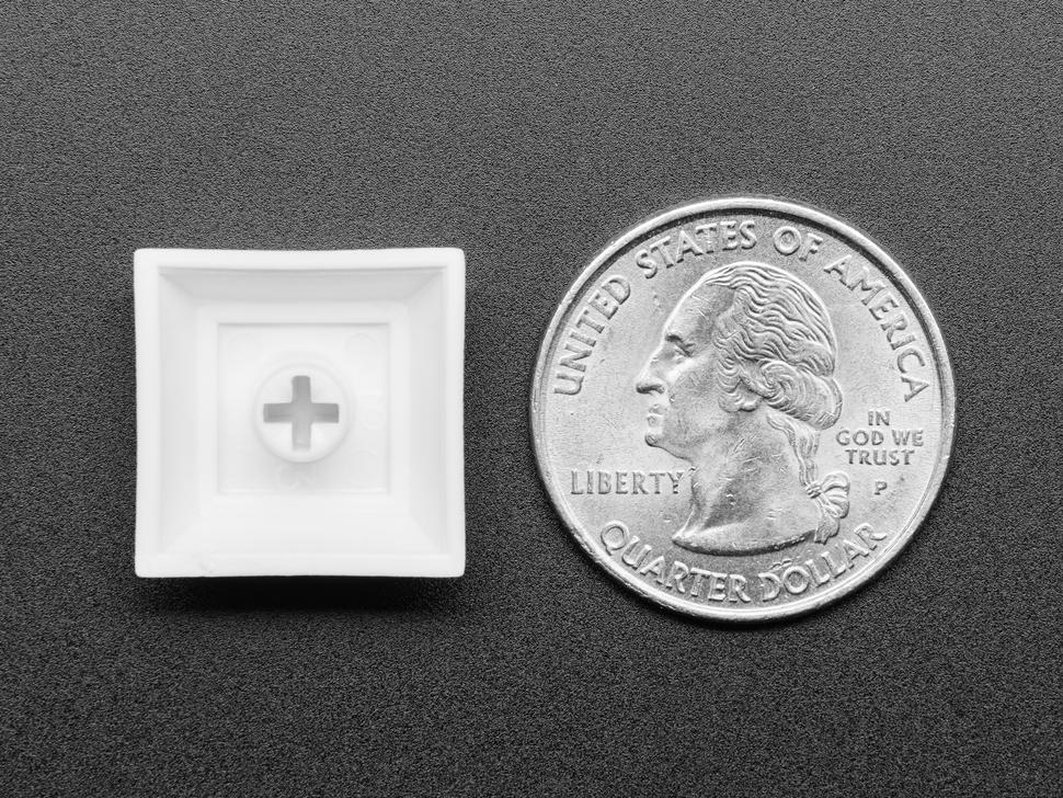 Bottom of white plastic keycap next to US quarter.