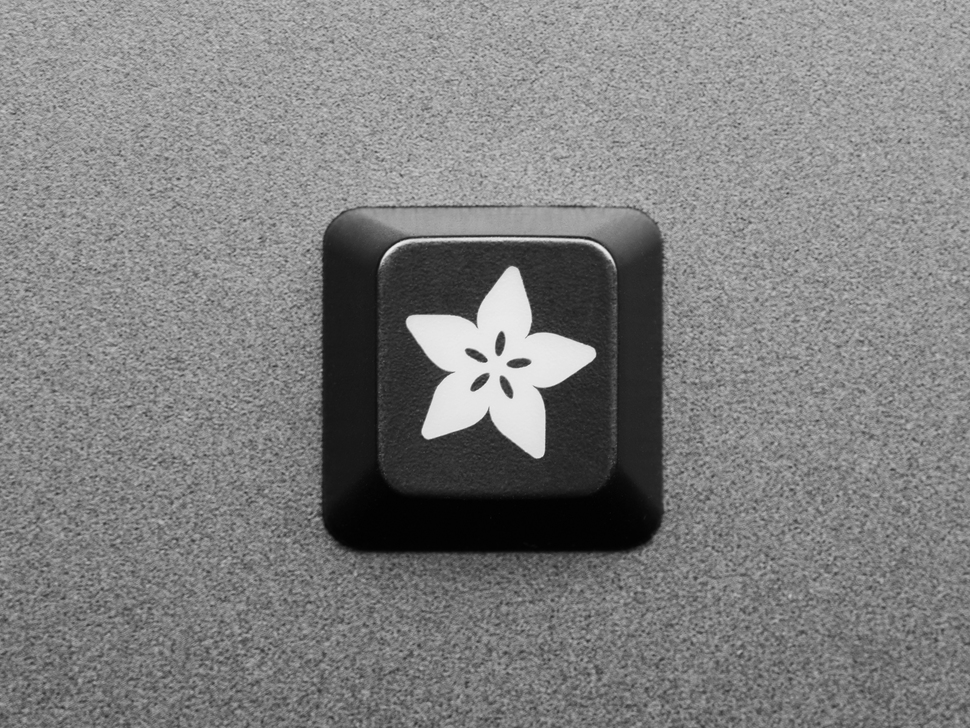 Top view of single black keycap with the Adafruit logo.