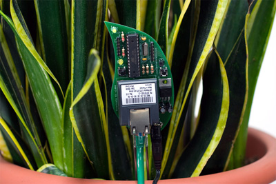 The botanicalls 2 kit lets your plant use twitter
