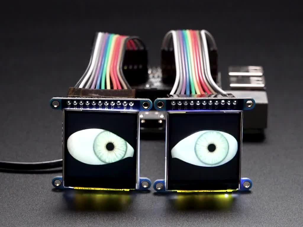 Two TFT screens with realistic eyeballs looking around and blinking