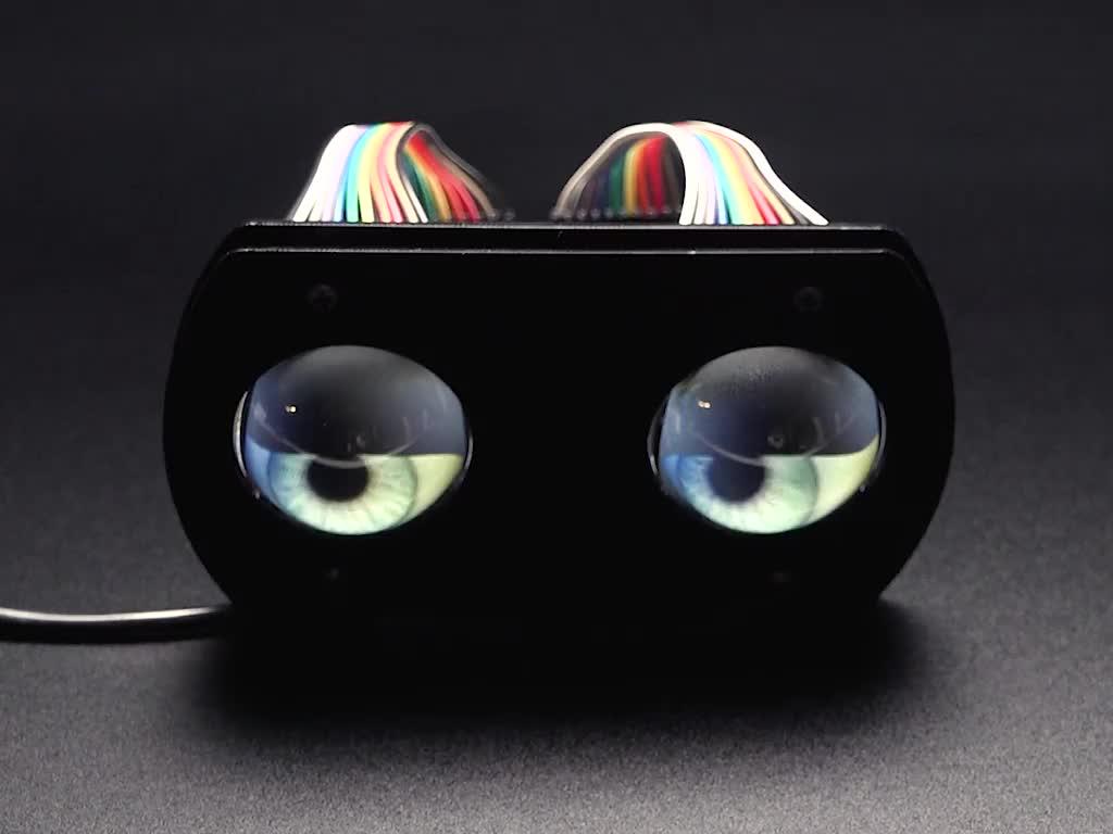 Lenses installed on TFT Eyes kit, showing rounded eyeballs