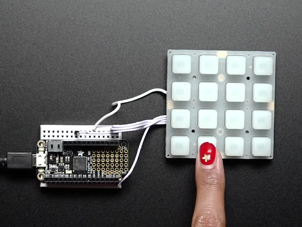 Hand pressing buttons that light up on 4x4 NeoTrellis kit