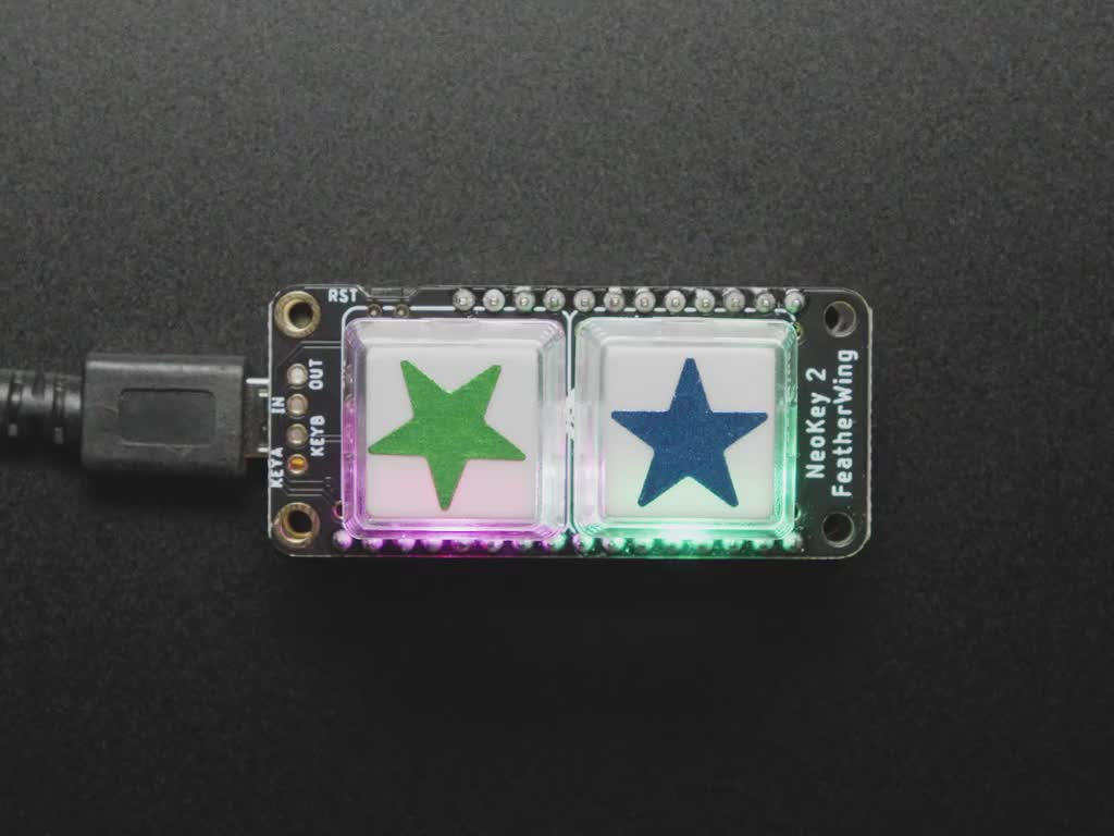 Video of 2 white plastic keycaps assembled on a NeoKey FeatherWing. Two blue and green star stickers are placed on the keycaps. The LEDs below the keycaps emit rainbow colors.