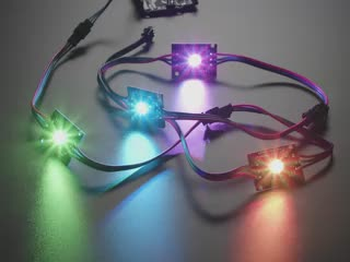 Angled video of four NeoPixel LEDs chained together, all emitting rainbow colors.