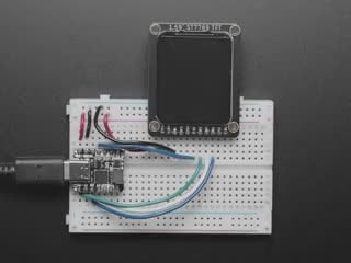 """Video of 1.69"""" 280x240 Round Rectangle Color IPS TFT Display plugged into a breadboard and QT Py. The TFT displays a boot-up screen with """"Hello, world!"""""""