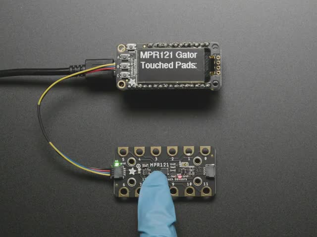 Adafruit MPR121 12-Key Capacitive Touch Sensor Gator Breakout connected to a Feather. A finger presses alligator pads on breakout and OLED displays which pads are touched.
